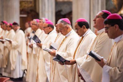 Dom Manoel estará hoje em audiência com o Papa Francisco