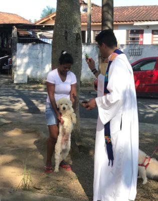 Santuário Nossa Senhora da Guia abençoa animais no dia de São Francisco de Assis
